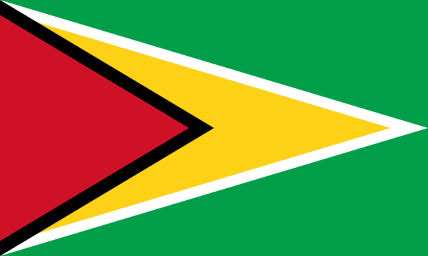 1200px-Flag_of_Guyana-1.svg.png