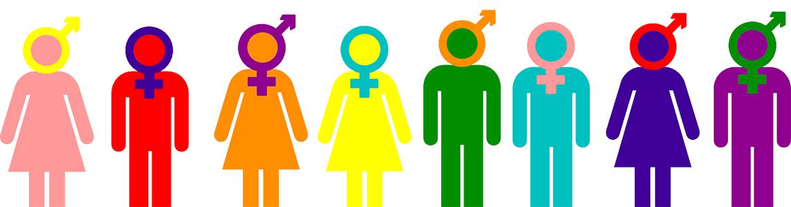 Sexualities and genders